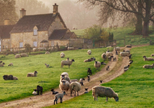 Wandern in England - Cotswold Way